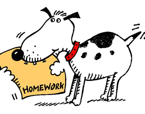 Stupidest homework excuses